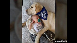 Baby & doggy cuddling session is the cutest thing you'll see today