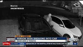 Man caught breaking into car near Ann & Tenaya - Video