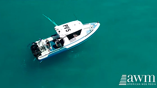 Aerial Footage Compares The Size Of This Boat To What Some Are Calling Largest Shark Ever - Video