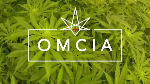 NEWSLOCAL NEWSASHTABULA COUNTY NEWS Ohio is considering adding 73 new medical marijuana dispensaries to its exciting 57 approved dispensaries, potentially creating 130 across the state.