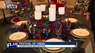 Downtown Rochester Festival of Trees 2017 - Video