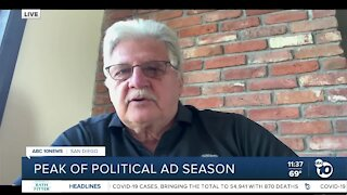Expert discusses political ads during pandemic