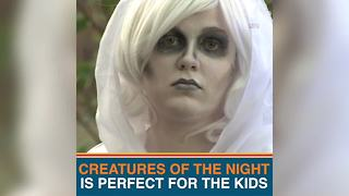 Celebrate Halloween at Lowry Park Zoo | Taste and See Tampa Bay - Video