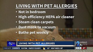 Living With Pet Allergies