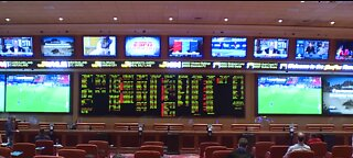 Vegas sportsbooks seeing more sports, bets