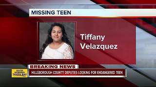Deputies seek help finding missing, endangered 16-year-old Tampa girl - Video