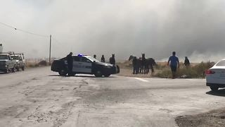 Horses escape fire along Cottonwood Road - Video