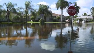 Hundreds of homes impacted by flooding in Lantana