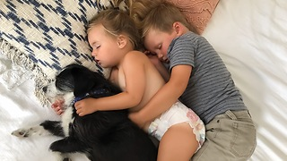 Siblings cuddle with rescue dog for nap time