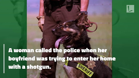 Watch: Hero K9 Officer Snatches Loaded Shotgun Away From Suspect's Hand