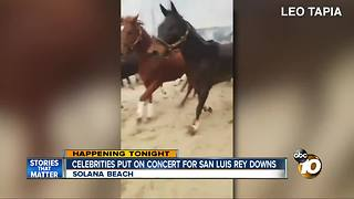Benefit held for San Luis Rey after Lilac Fire - Video
