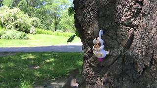 Squirrel steals must-have Fingerling toy - Video