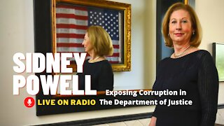 Sidney Powell Radio Interview Exposes Supreme Court Corruption In Washington DC