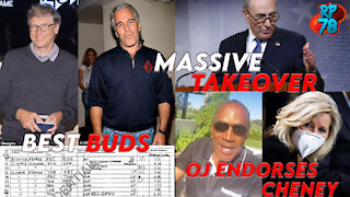 DC Swamp Attempts Massive Elections Takeover, Gates & Epstein Were Bros