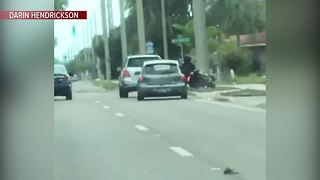 Shocking video shows hit-and-run in Sarasota - Video