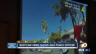 Bodycam video shows man punch San Diego police officer - Video