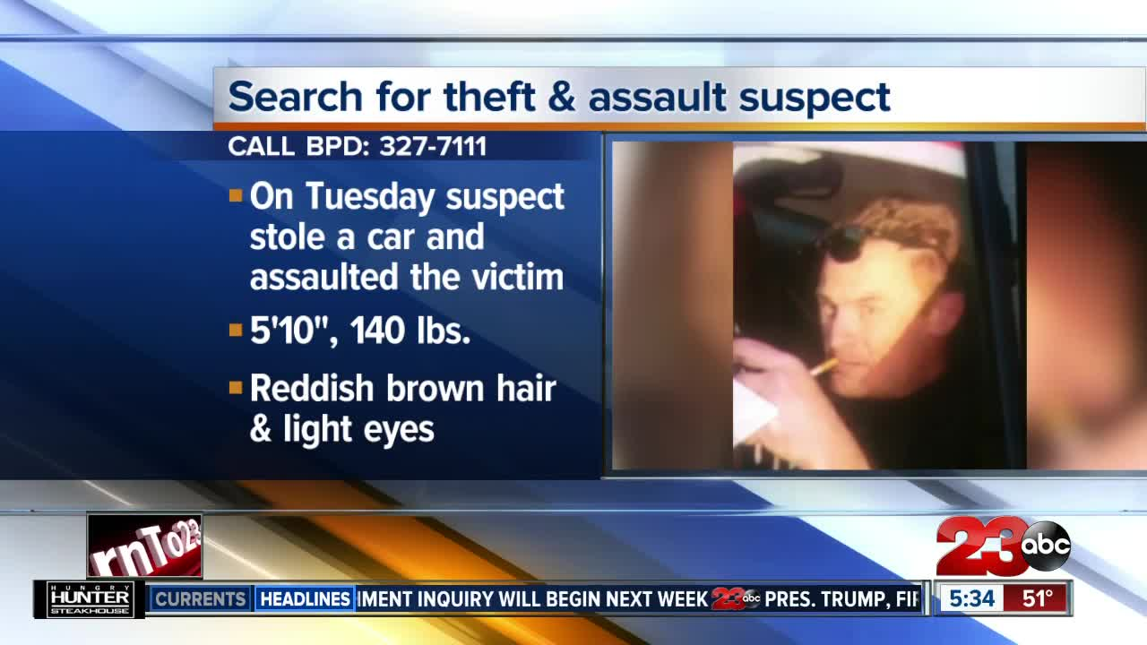 Search for Theft and Assault Suspect
