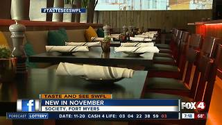 Trendy Fort Myers restaurant opens - Video
