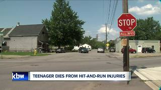 Teen dies after hit-and-run - Video