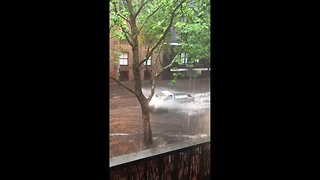 Flash flooding in Sydney causes commuter chaos - Video