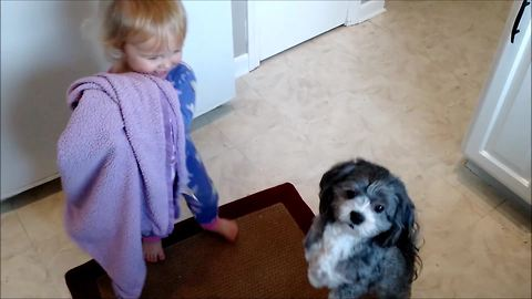 Patient puppy tolerates playful toddler