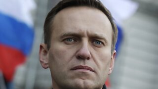 Putin Critic Alexei Navalny Hospitalized In Suspected Poisoning