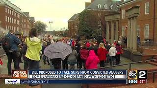 Bill proposed to take guns from convicted abusers - Video