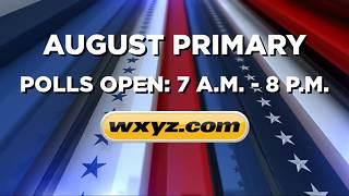 Hot races to watch in the August primary - Video