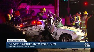 Driver crashes into pole, dies