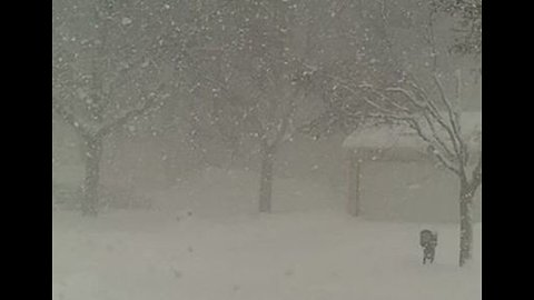 Snow Piles Up and Creates Whiteout Conditions in Grand Rapids