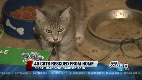 PACC responds to alleged cat hoarder home