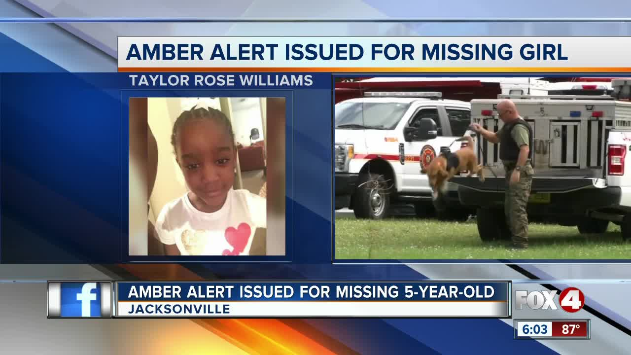 Amber Alert issued for missing Jacksonville 5-year-old