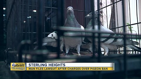 Man files lawsuit after charges over pigeon ban in Sterling Heights