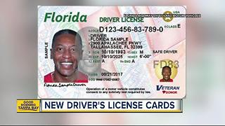 Check out Florida's new driver's licenses and ID cards - Video