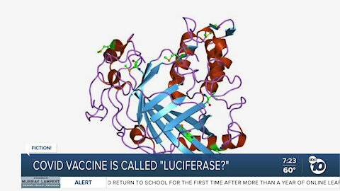Fact or Fiction: COVID-19 vaccine called Luciferase?