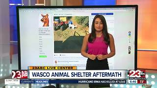 Wasco Animal Shelter Update - Video