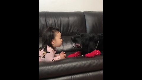 Little girl feeds dog a treat, cleans up the mess