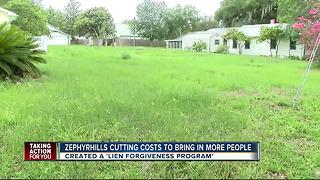 Zephyrhills is trying to turn vacant lots into a thriving community - Video