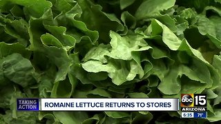 Romaine lettuce being put back on Valley shelves after E. coli scare
