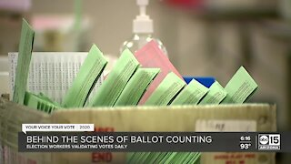 Behind the scenes of ballot counting