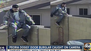 Thieves break into Peoria home, steal multiple items from home - Video