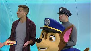 PAW Patrol Live - Video