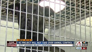 KC Pet Project will not take over animal control
