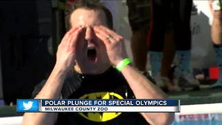 Hundreds take polar plunge for Special Olympics Wisconsin - Video