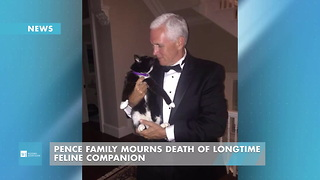 Pence Family Mourns Death Of Longtime Feline Companion - Video