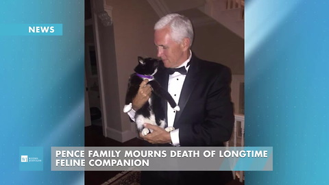 Pence Family Mourns Death Of Longtime Feline Companion