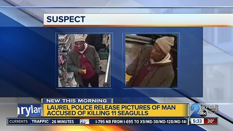 Police release pictures of man accused of killing seagulls