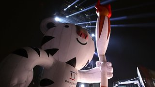 Meet 'Soohorang': Pyeongchang's Mascot For The 2018 Winter Olympics - Video