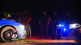 Driver crashes, flees after police pursuit