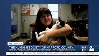 Humane Society of Harford County needs your support